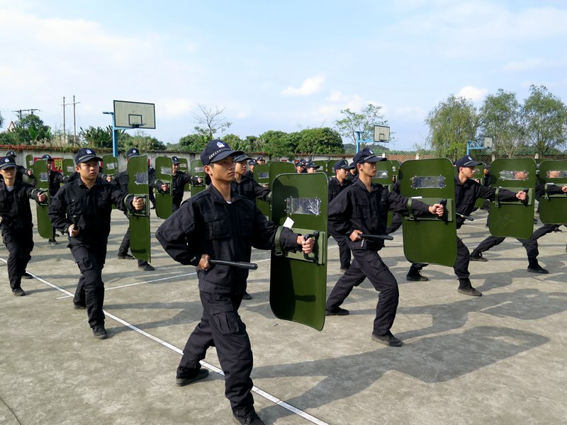 盾牌术培训